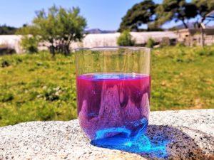 La phycocyanine dans un verre